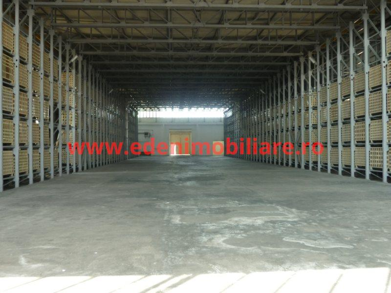 Hala depozitare de vanzare in Cluj, zona Iris, 900000 eur