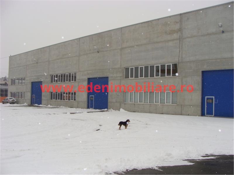 Hala depozitare de inchiriat in Cluj, zona Sanicoara, 10093 eur